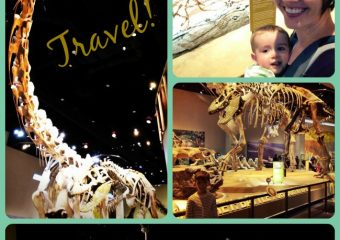 Our trip to the Perot Museum of Nature and Science!