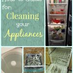 6 Tutorials for Cleaning Your Appliances – Spring Cleaning How-To Guide