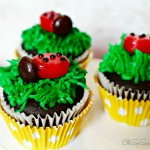 Ladybug Cupcakes Recipe + Cute as a Bug Ladybug Birthday Party Ideas!