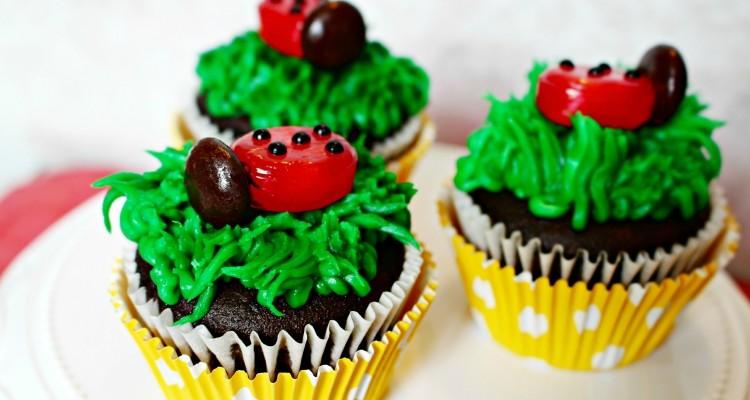 Ladybug Cupcakes Recipe + Cute as a Bug Ladybug Birthday Party Ideas!