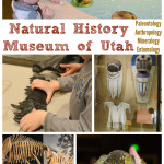Visit the Natural History Museum of Utah