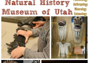 Visit the Natural History Museum of Utah