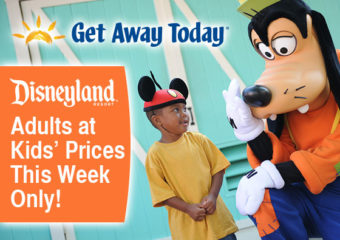 Disneyland Tickets Discount! 3 Days Left!