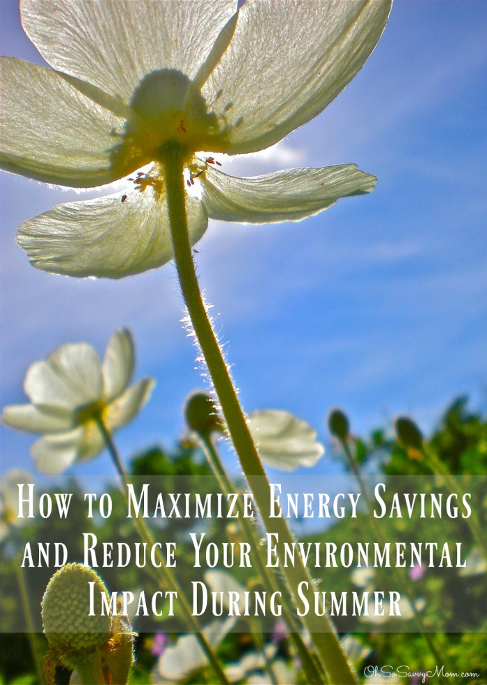 How to Maximize Energy Savings and Reduce Your Environmental Impact During Summer