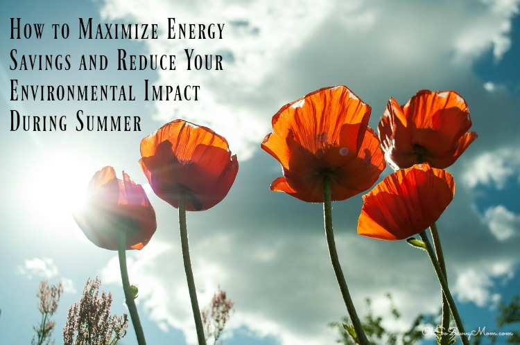 Maximize Your Energy Savings this summer