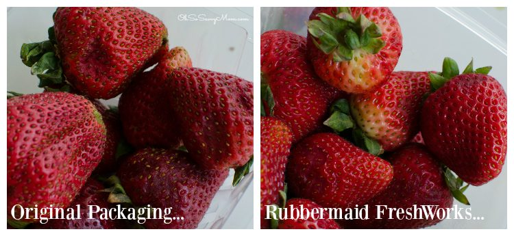 Rubbermaid FreshWorks Strawberry test